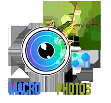 Macrophotos